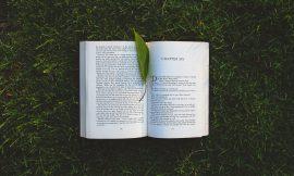 《如何阅读一本书》第一章 阅读的活力与艺术 笔记