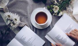 《如何阅读一本书》 第二章 阅读的层次 笔记