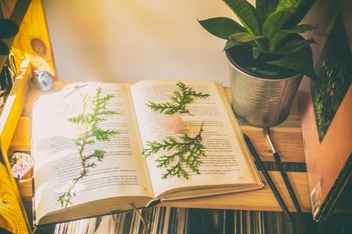 《好好学习:个人知识管理精进指南》  笔记开篇
